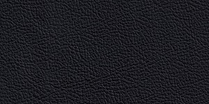 S002 LeatherS002